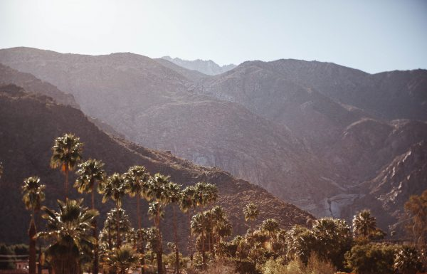 15 Reasons We Love Palm Springs
