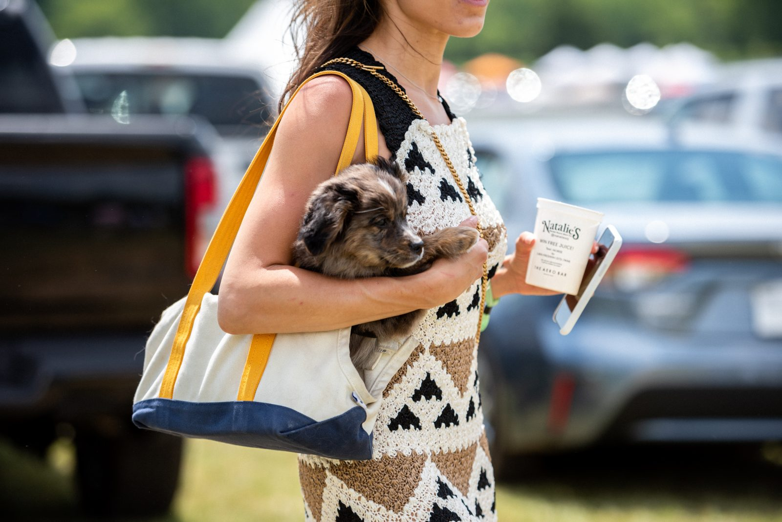 woman holding a puppy at Steeplechase 21
