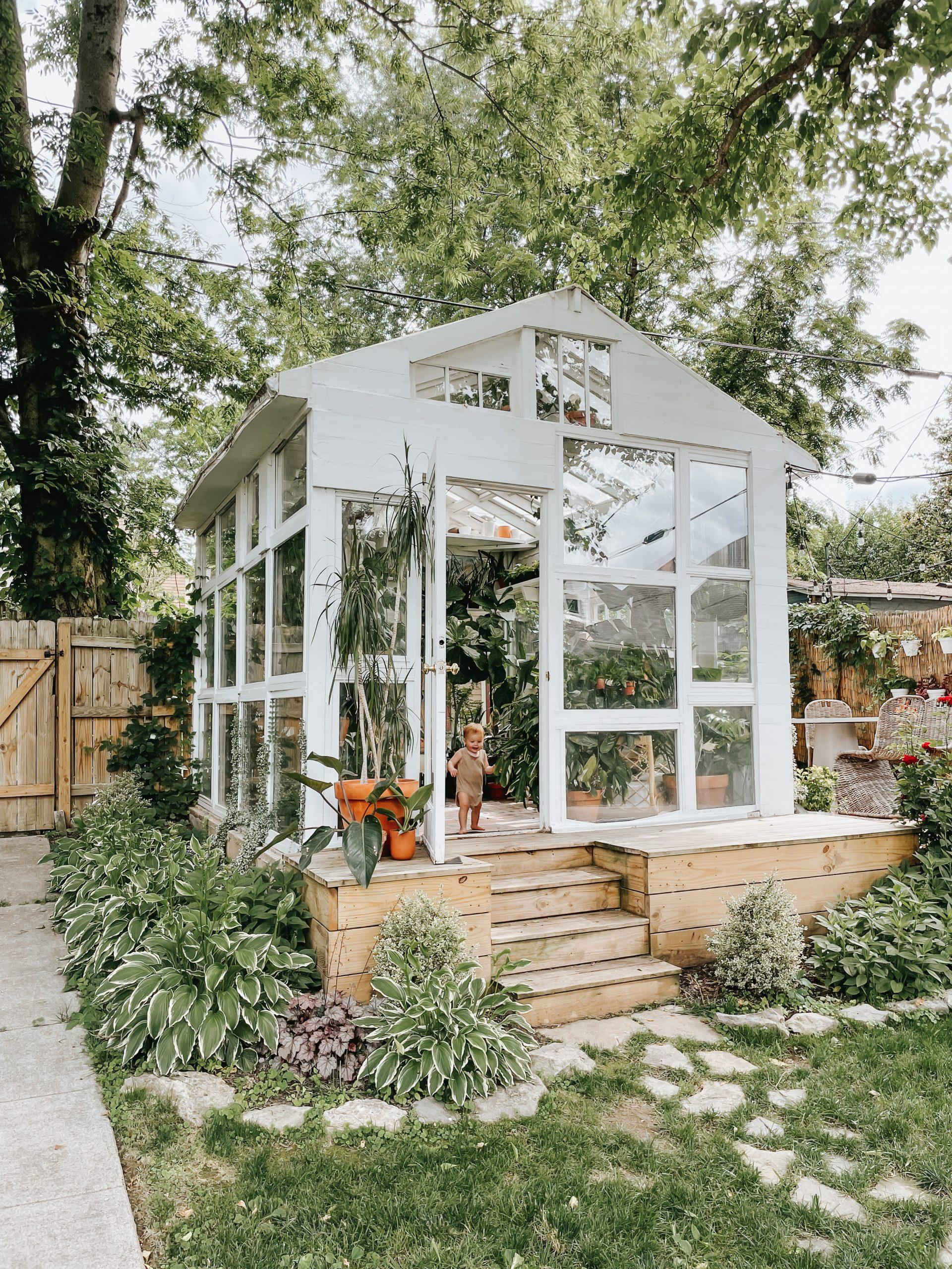 East Nashville Greenhouse plants backyard greenhouse